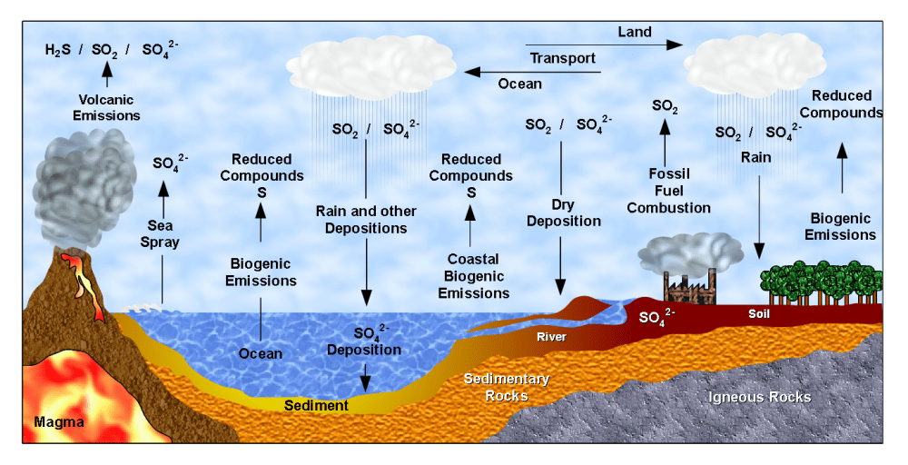 medium resolution of file sulfur cycle ciclo do enxofre png