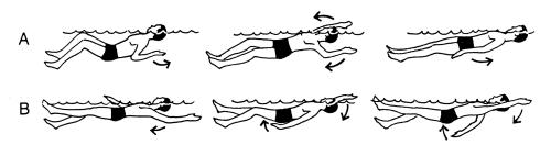 small resolution of backstroke