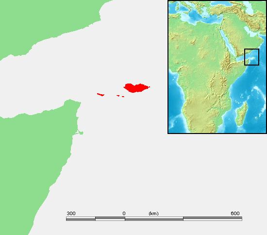 Ile de Socotra
