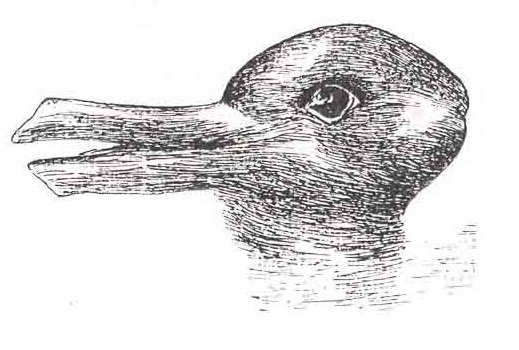 Duckrabbit. Source: Wikimedia