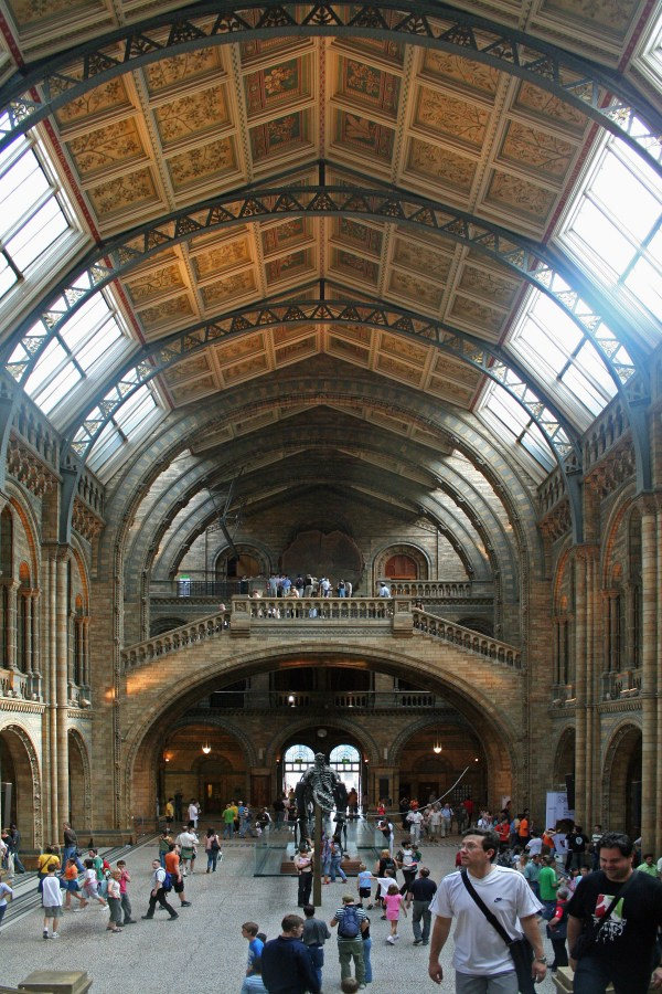 File Main Hall Of Natural History Museum - London Wikimedia Commons