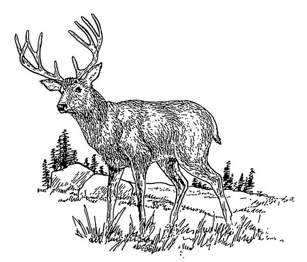 Deer Clip Art Black and White