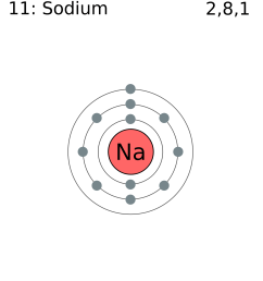 file electron shell 011 sodium png wikimedia commons bohr diagram for sodium diagram for sodium [ 1678 x 1835 Pixel ]