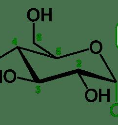 glucose bond diagram [ 1100 x 747 Pixel ]