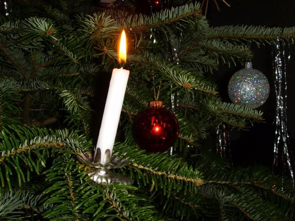 First year having a Christmas treeneed help