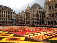 File:Flower Carpet on the GrandPlace (August 14-19 ...