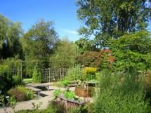 File Oslo Botanical Garden - Img Wikimedia Commons