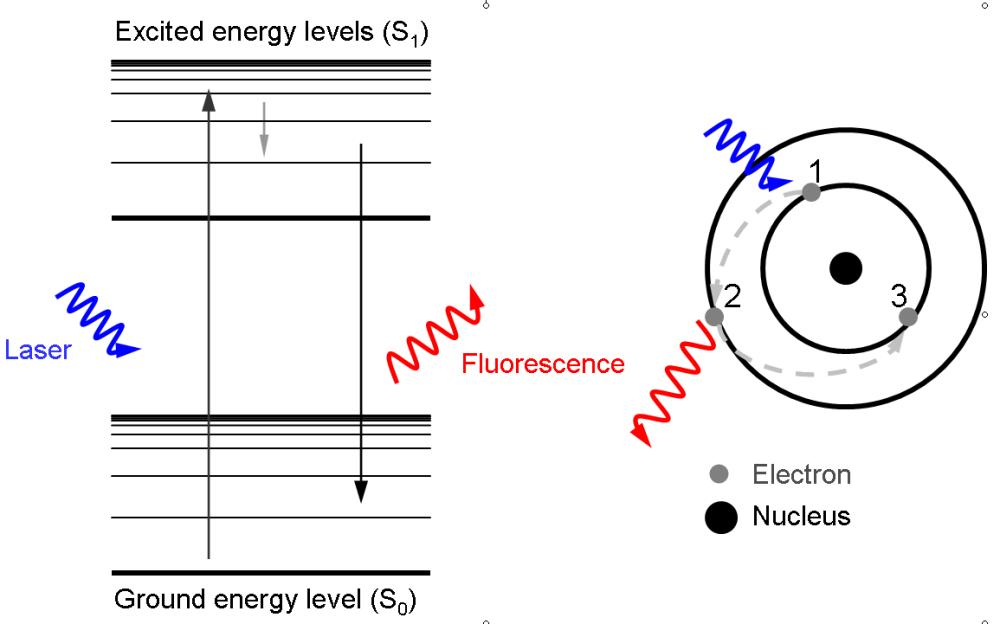 medium resolution of file laser induced fluorescence png