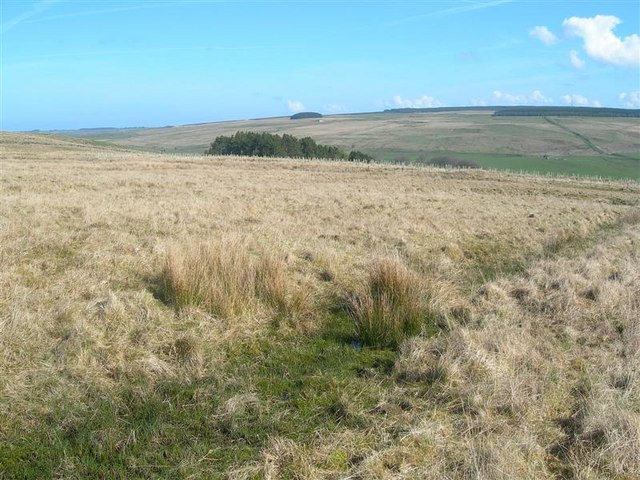 https://i0.wp.com/upload.wikimedia.org/wikipedia/commons/4/4b/Moorland_View_-_geograph.org.uk_-_791397.jpg