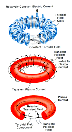 Tokamak magnetic field and plasma current.