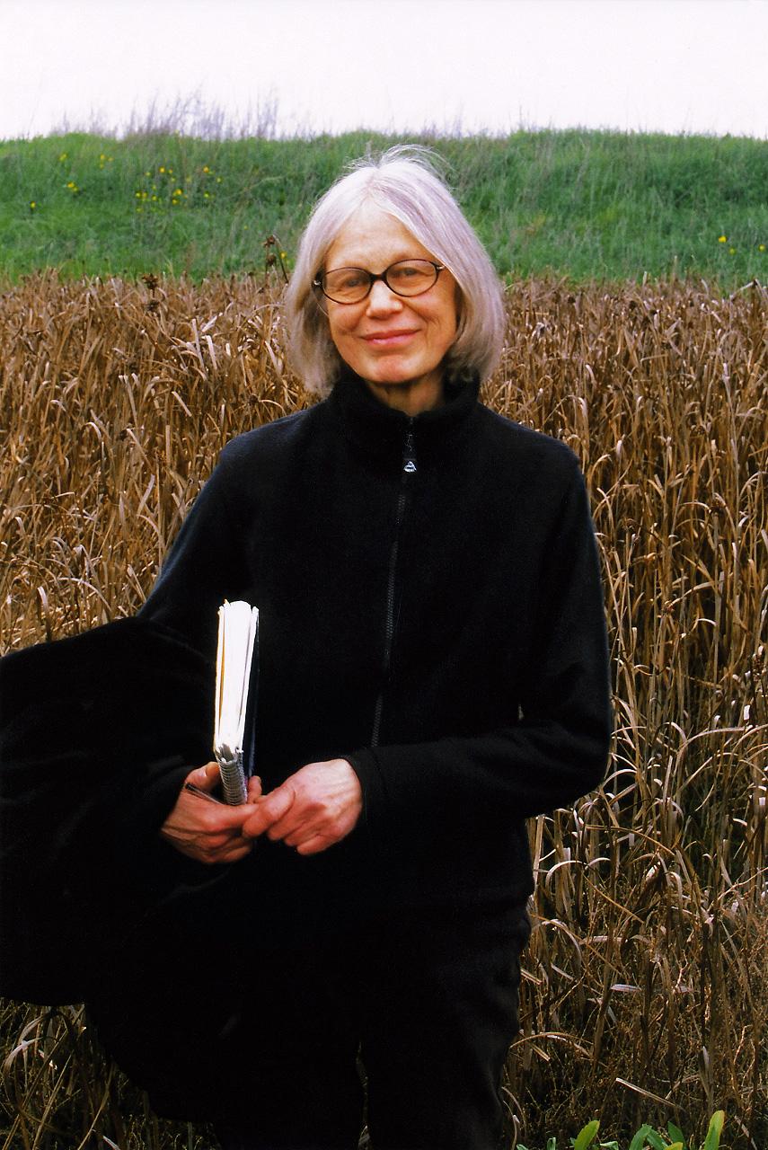 Patricia Johanson  Wikipedia