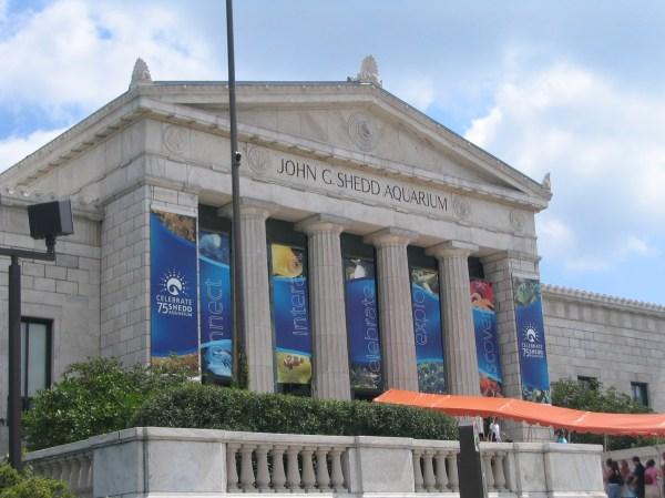 File Shedd Aquarium Chicago August