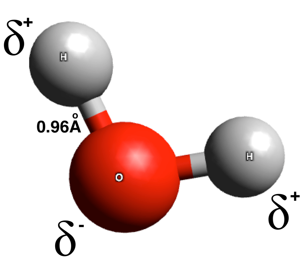 water molecule diagram single phase double capacitor induction motor wiring intramolecular force wiki everipedia