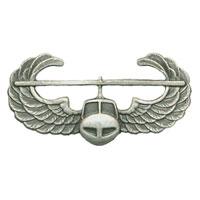 Air Assault Pin