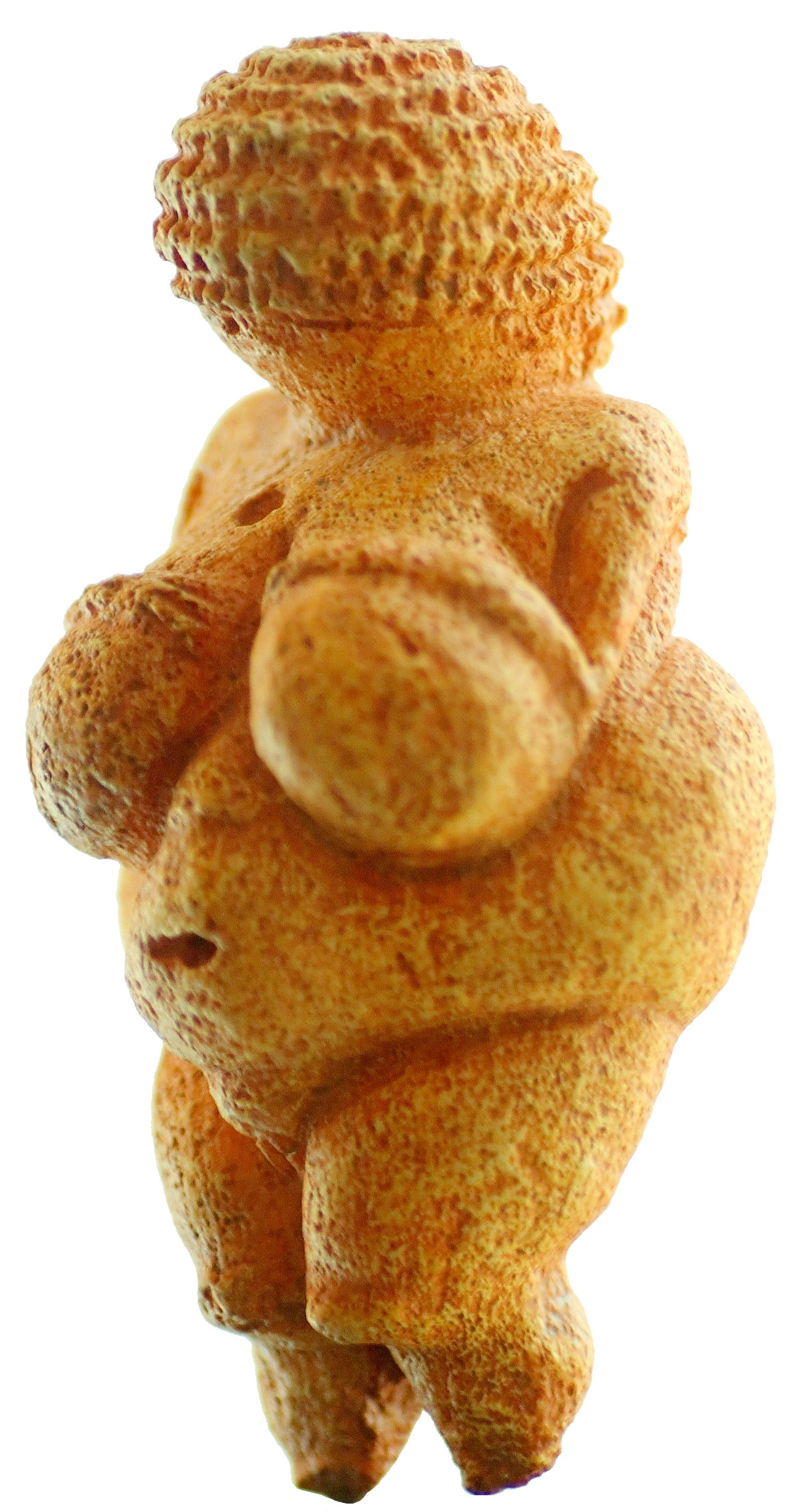 venus of willendorf (wikipedia)