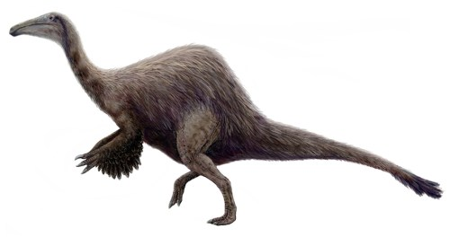 https://i0.wp.com/upload.wikimedia.org/wikipedia/commons/5/51/Hypothetical_Deinocheirus.jpg?resize=500%2C264