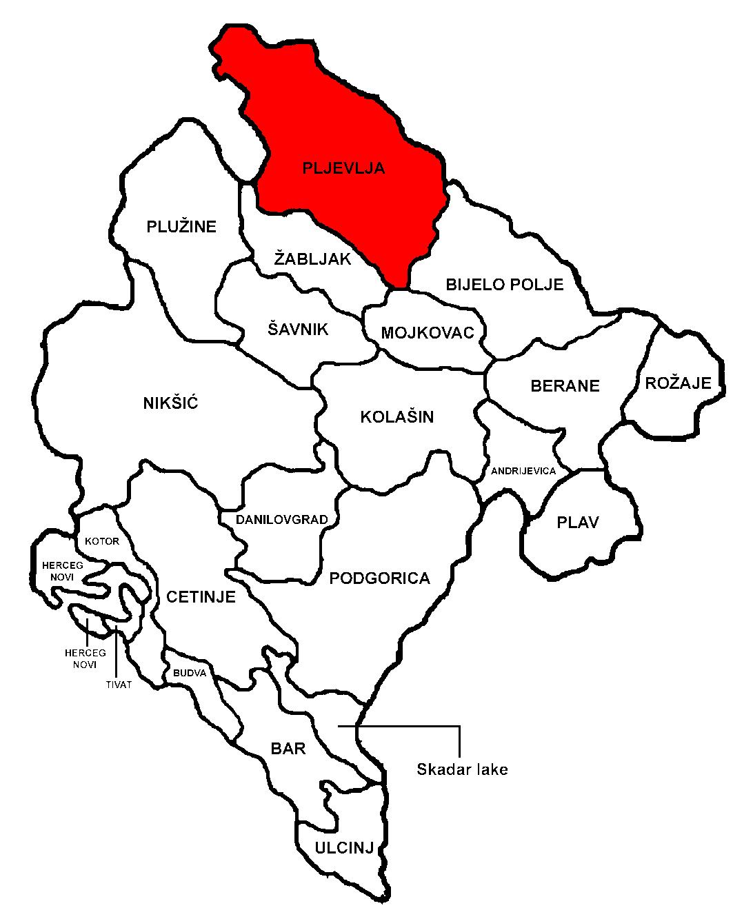 Pljevlja Municipality  Wikipedia