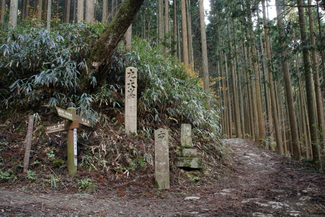 Pilgrimage route of Kumano