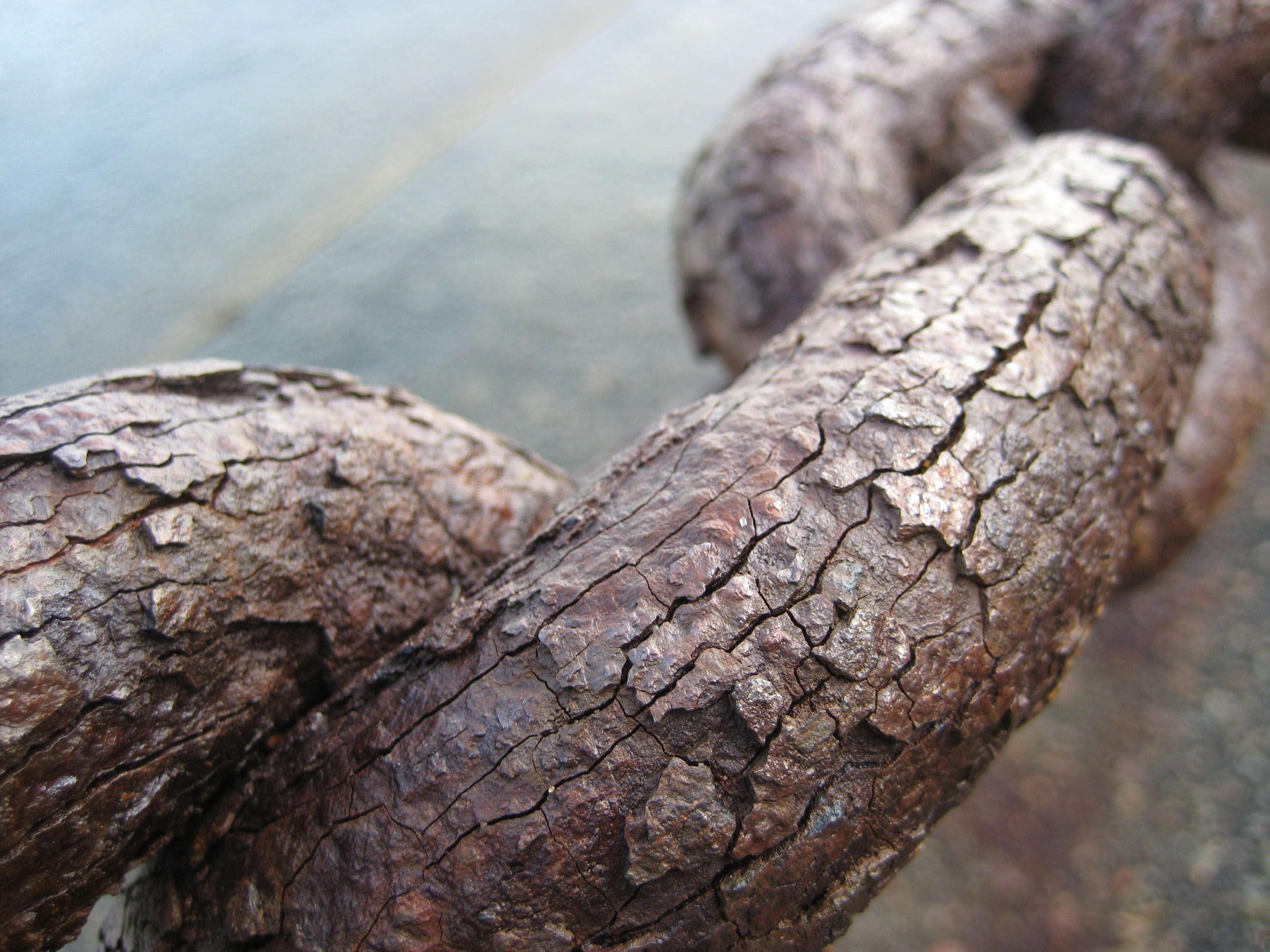 English: Heavy rust on the links of a chain ne...