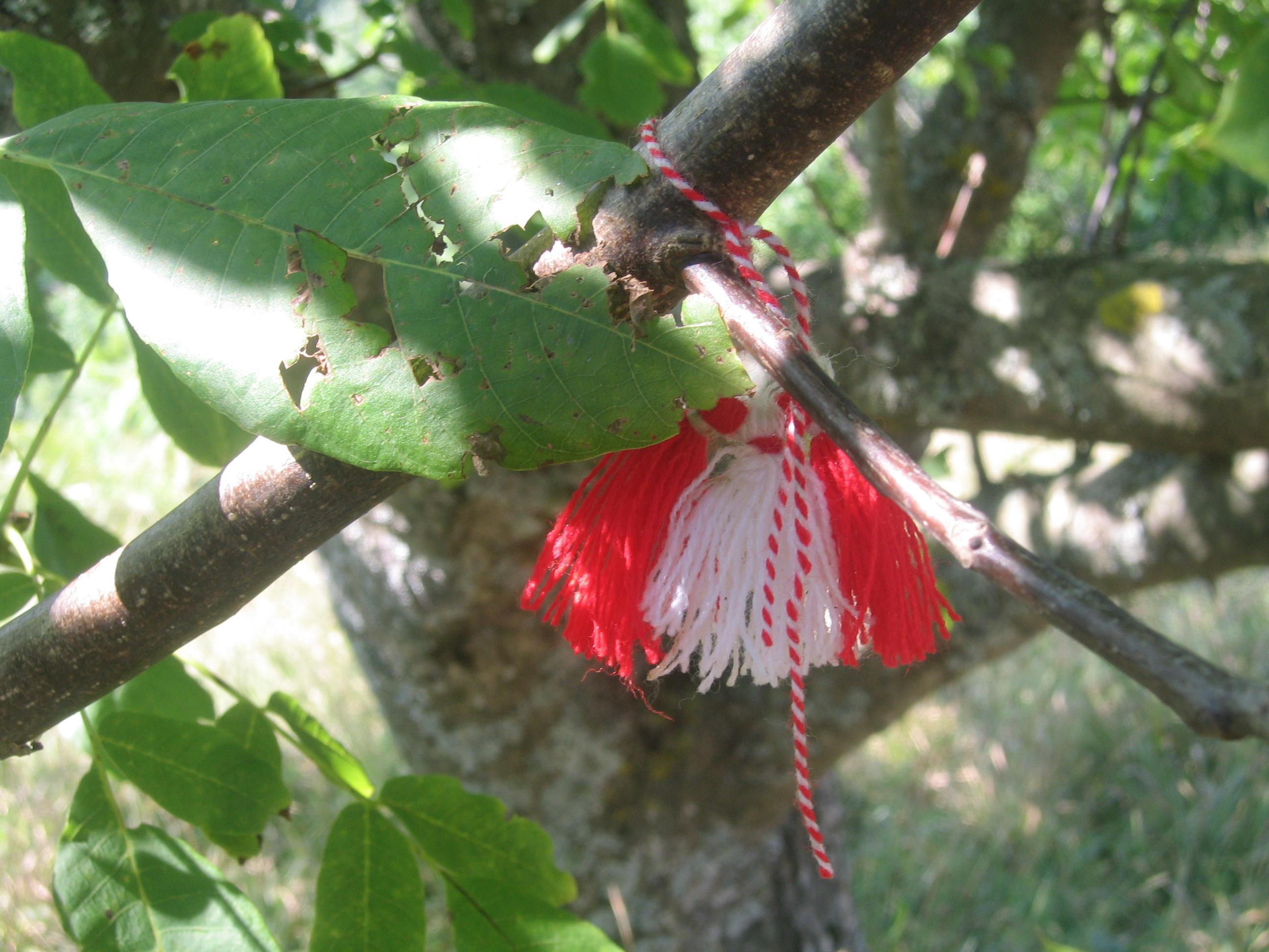Tree-Martenitsa.jpg