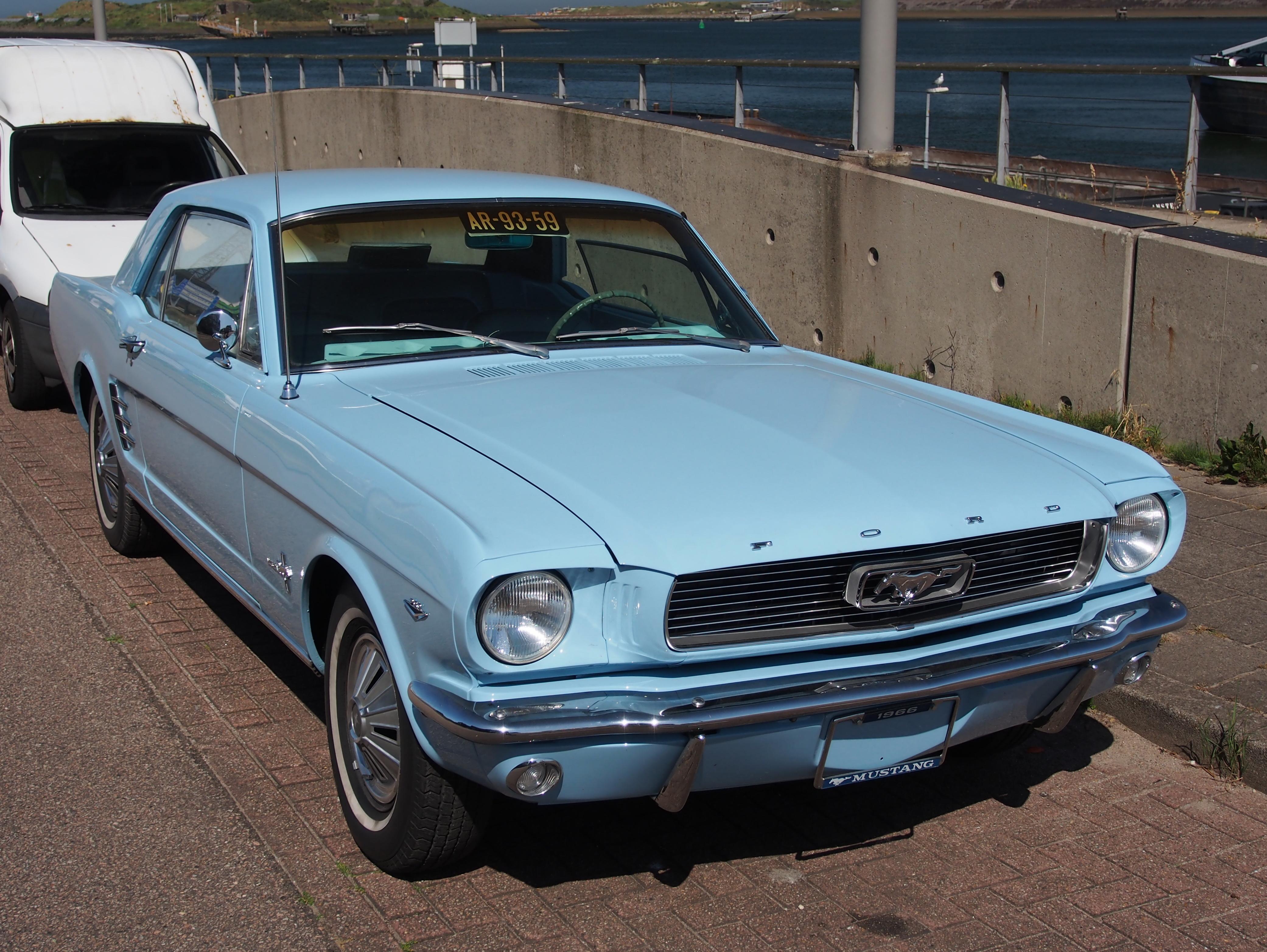 Mustang Light Blue