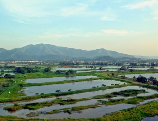 Lok Ma Chau- better air quality due to large area of wetland