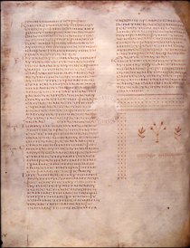 File:Codex Alexandrinus f41v - Luke.jpg