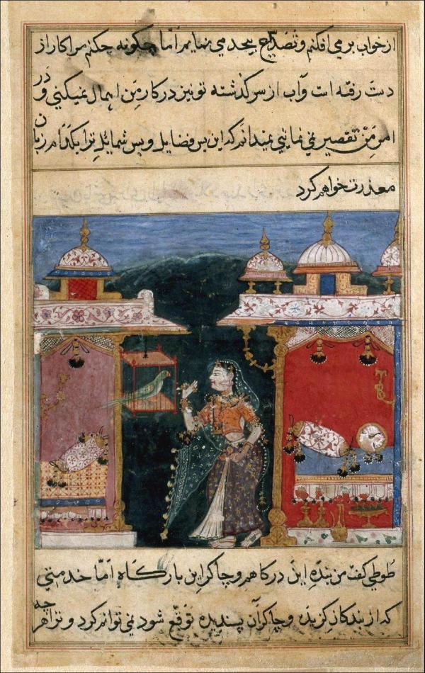 File Parrot Addresses Khojasta Beginning Of Seventh Night Tuti-nama Ca. 1570