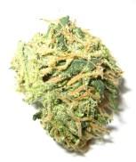 Can Marijuana Cure Chronic Pain?