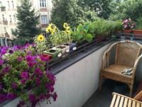 File:Berlin balcony with flowers.jpeg - Wikimedia Commons