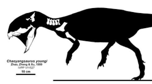 https://i0.wp.com/upload.wikimedia.org/wikipedia/commons/5/5a/Chaoyangsaurus.png?resize=490%2C271&ssl=1
