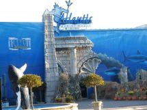 Atlantis Marine World - Video Engine
