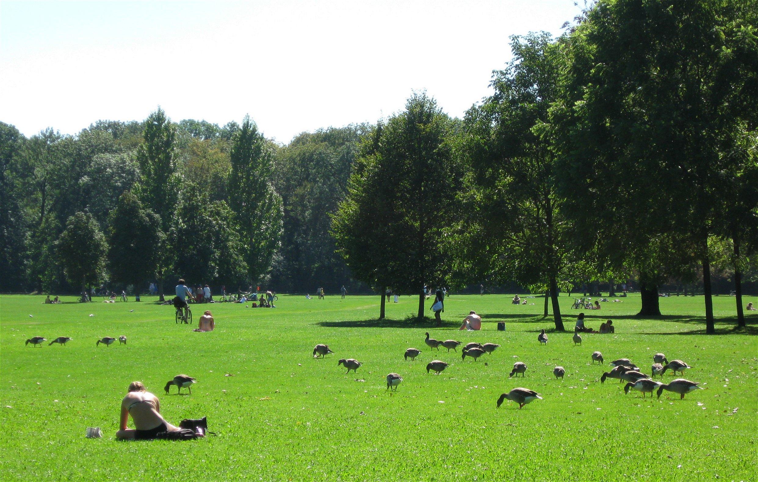 File Englischer Garten Werneckwiese Muenchen Wikimedia Commons