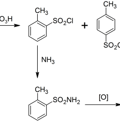 file remsen fahlberg synthesis of saccharin png [ 3022 x 1800 Pixel ]