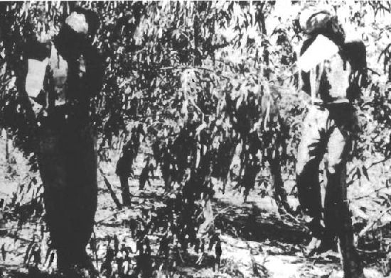 Irgun hanged sergeants (1947)