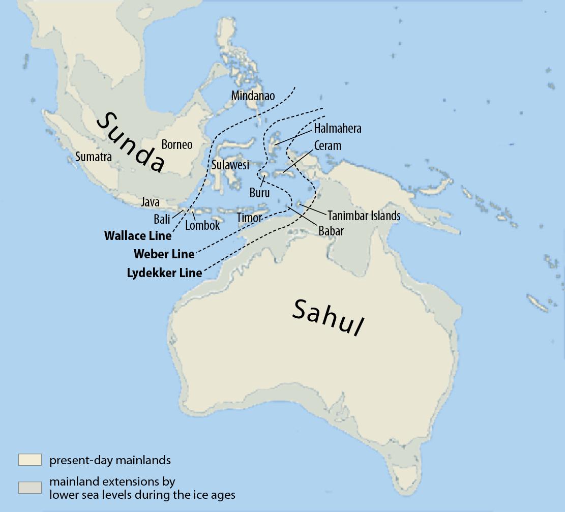 The Malay Archipelago Azimuth