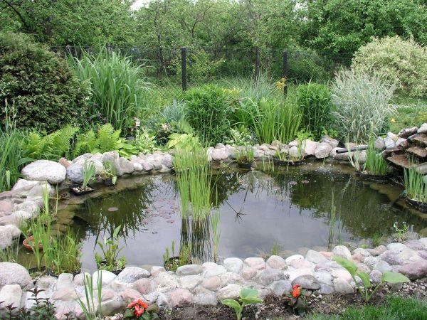 file garden pond