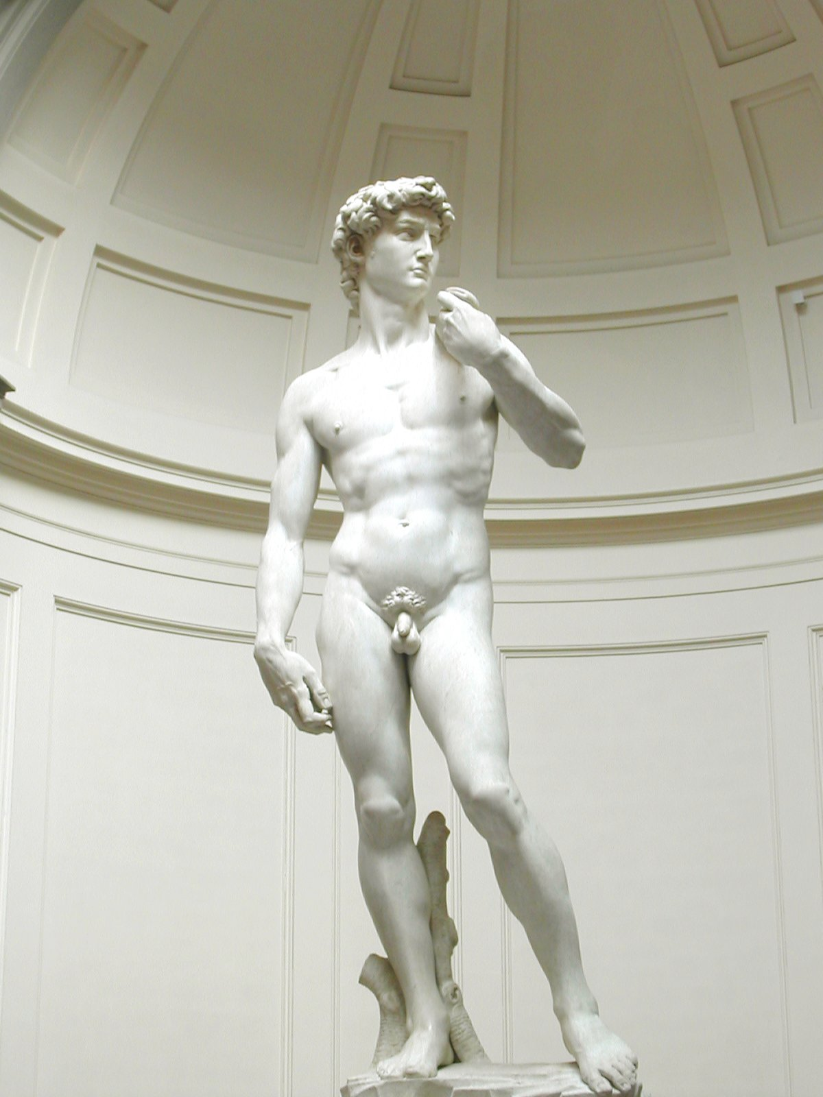 https://i0.wp.com/upload.wikimedia.org/wikipedia/commons/6/63/Michelangelos_David.jpg