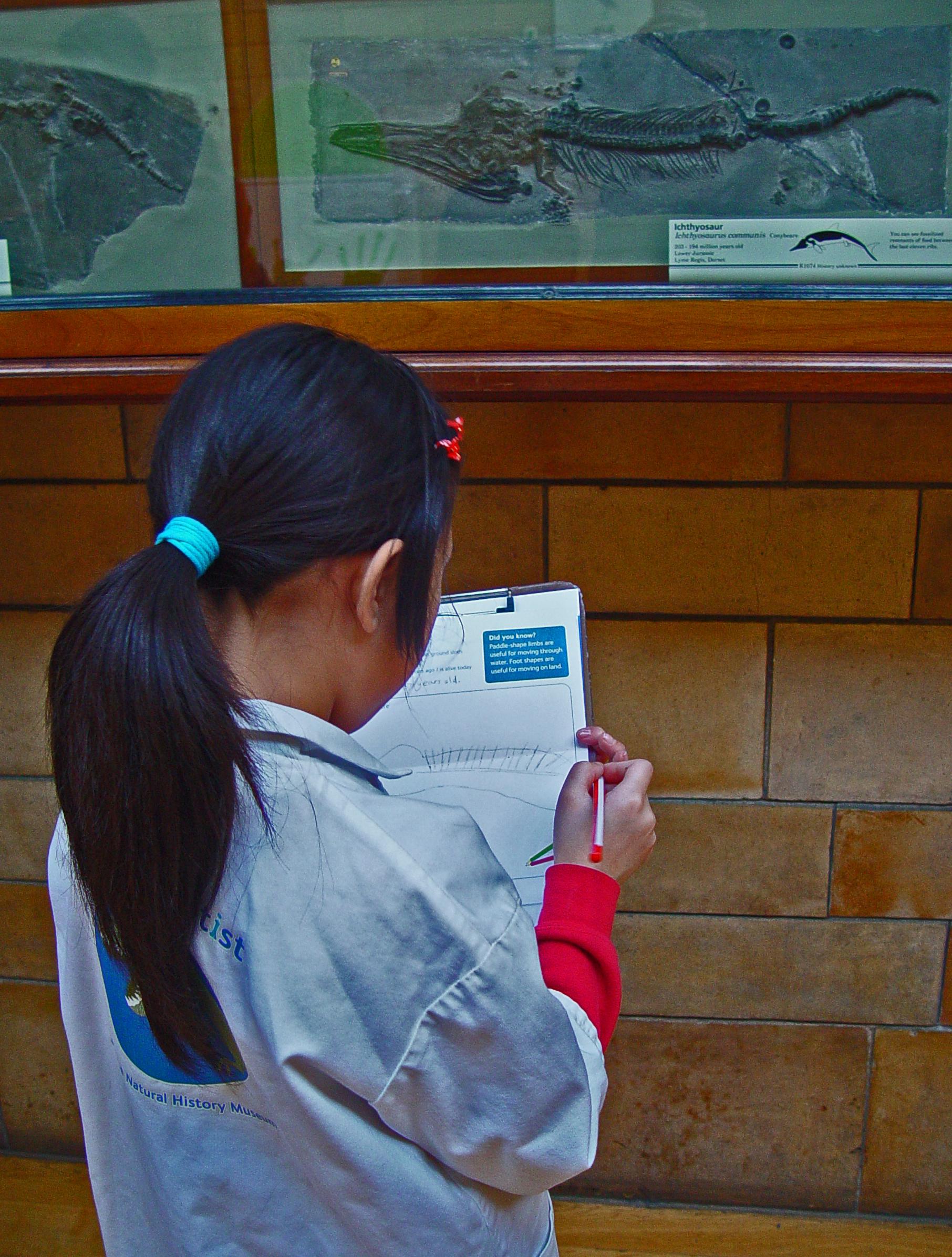 Một em bé say mê khám phá Bảo tàng Lịch sử Tự nhiên ở South Kensington, London.