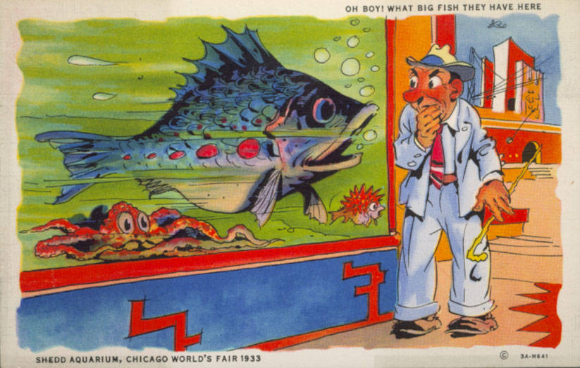 Colorful cartoon of a besuited man goggling at a poster of a giant fish