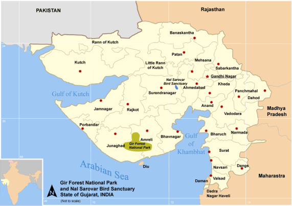gir national park map