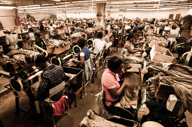 FileHandmade cigar production process Shopfloor of Tabacalera de Garcia Factory Casa de
