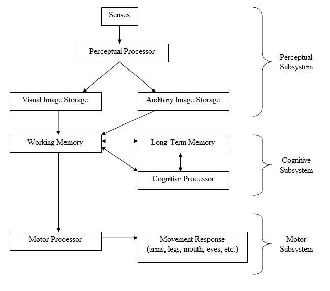 Human Processor Model Wikipedia