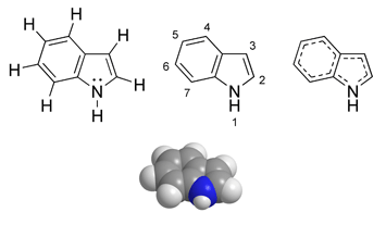 Indole chemical structure.png