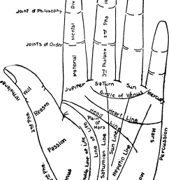 file chart of the hand png [ 1962 x 3072 Pixel ]
