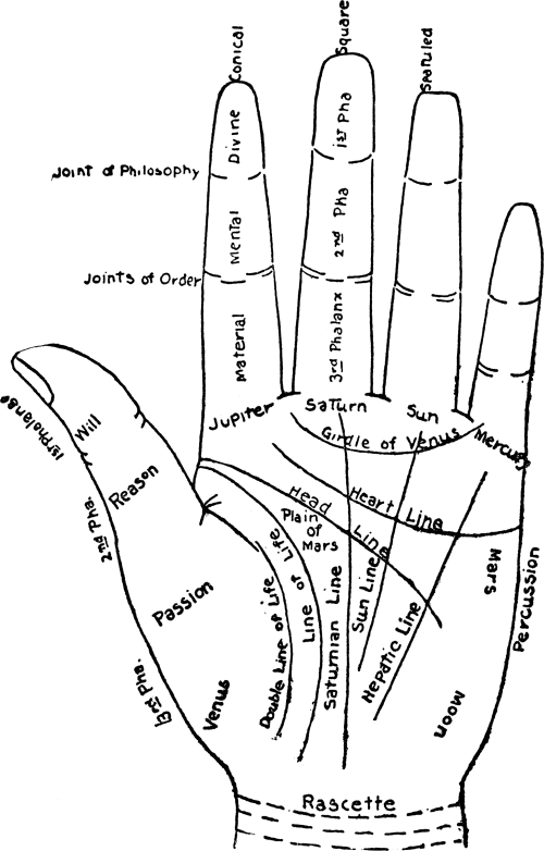 small resolution of file chart of the hand png
