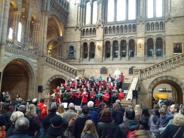 File Choir Of Natural History Museum Science And