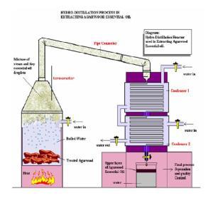 Herbal distillate  Wikipedia