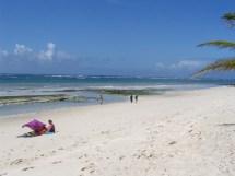 File Diani Beach South Indian