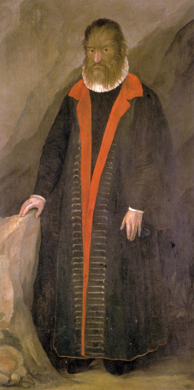 Retrato de Petrus Gonsalvus - Ampliar imagen